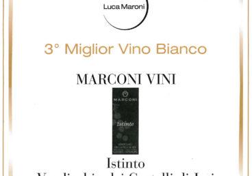 Verdicchio dei Castelli di Jesi Classico Superiore 2015 – Terzo Miglior Vino Bianco – Annuario dei Migliori Vini Italiani 2017